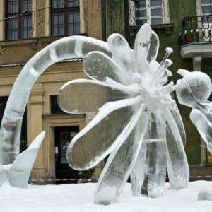 Rzeźba lodowa Poznań