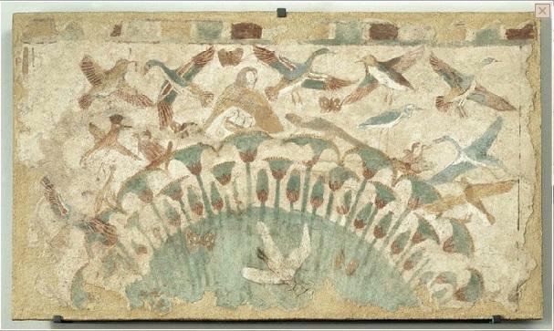 ptaki egipt
