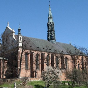 katedra sandomierz