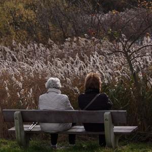 Pokolenia, seniorka, osoby starsze, opieka