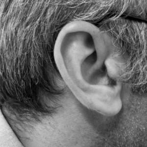 ucho słuch