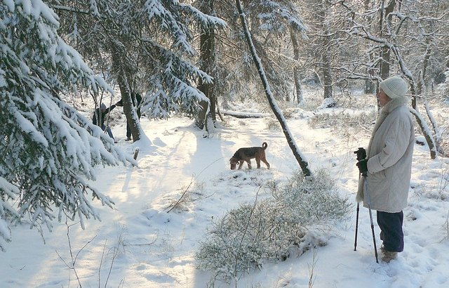 zima spacer