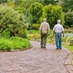 starzy-przyjaciele-spacer-rozmowa