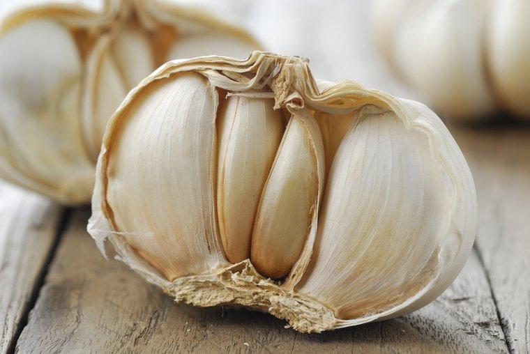 Czosnek pospolity (Allium sativum) to dobrze znany, naturalny antybiotyk.