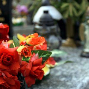 kwiaty na cmentarz