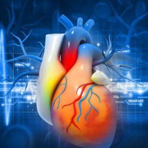 jak wzmocnić serce po arytmii lub zawale?