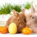 Życzenia wielkanocne – wierszyki i życzenia na Wielkanoc